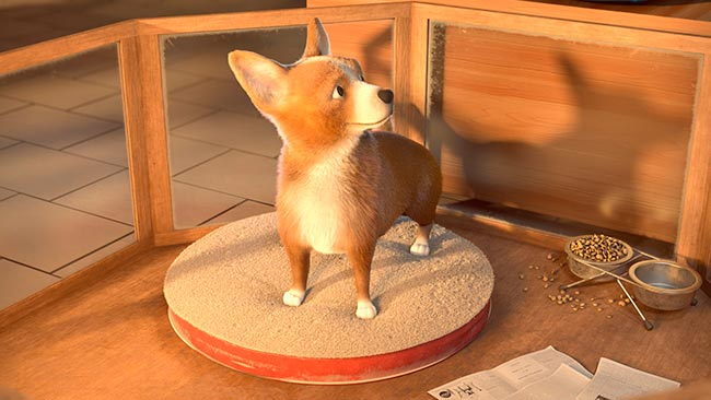 Meilleure animation - L'animalerie