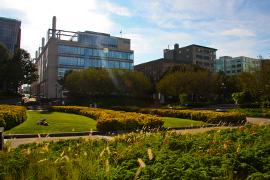 Parc du quartier Saint-Roch